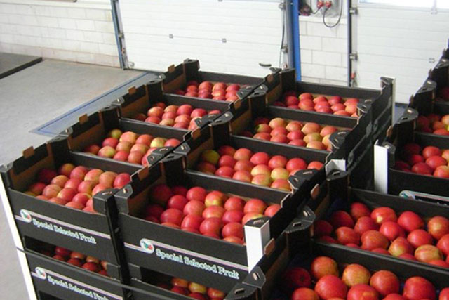 Special selected appels20in20de20doos